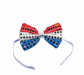 Light Up Bow Tie (Online Only)