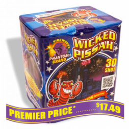 Wicked Pissah 200 gram fireworks repeater