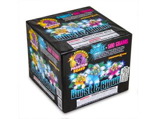 500 Gram Firework Repeater Burst and Bloom